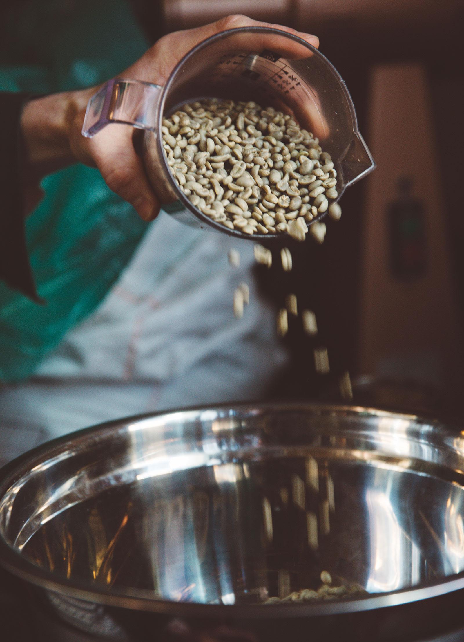 SV_beans