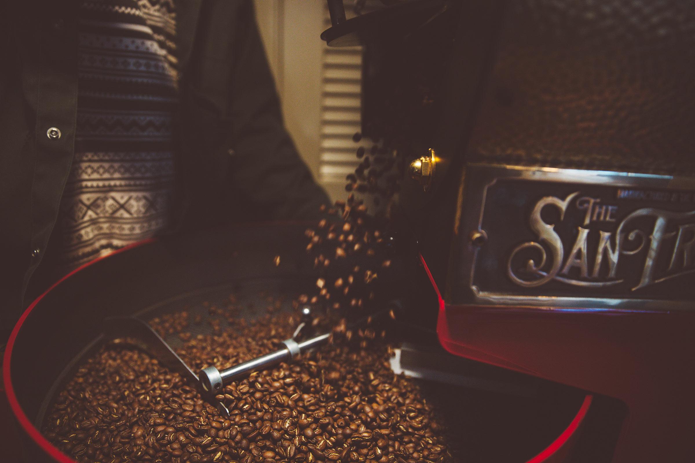 SV_beans2
