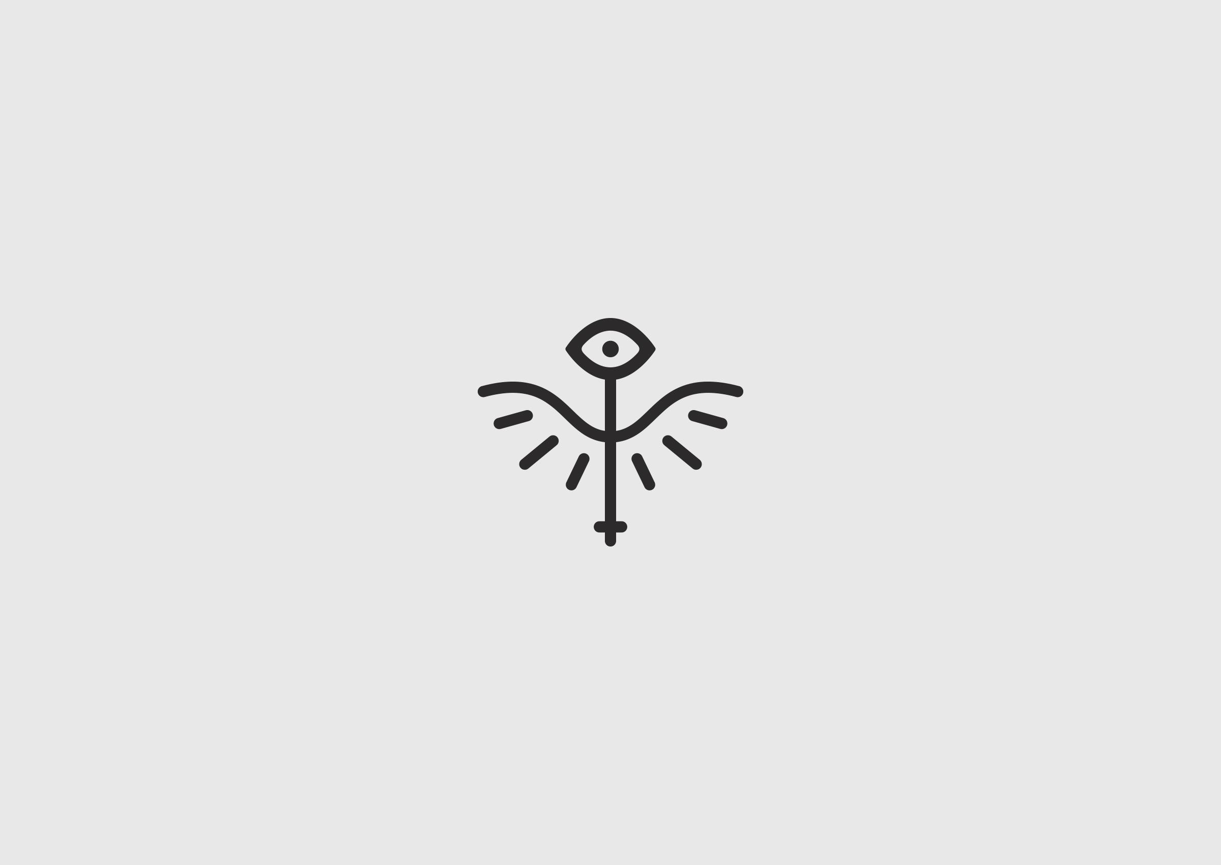 Logo_Strix